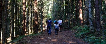 Kamp Ateşi - Yurt İçi Turlar - Yurt Dışı Turlar - Günübirlik Turlar